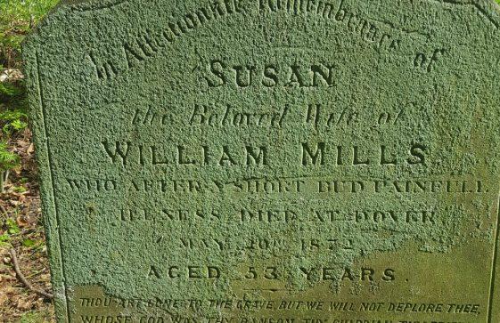 Gravestone of MILLS Susan 1872